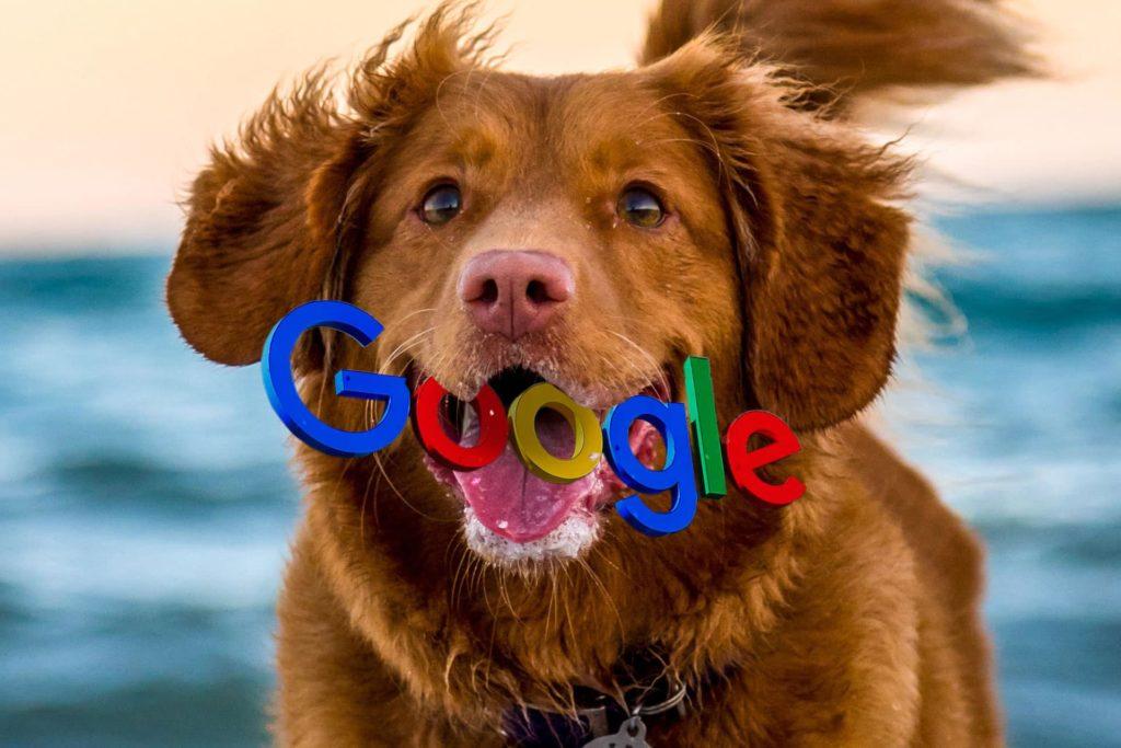 Googlebot Fetch My Site